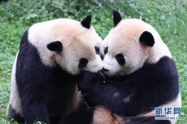云南野生动物园:野生动物暑期科普季开启