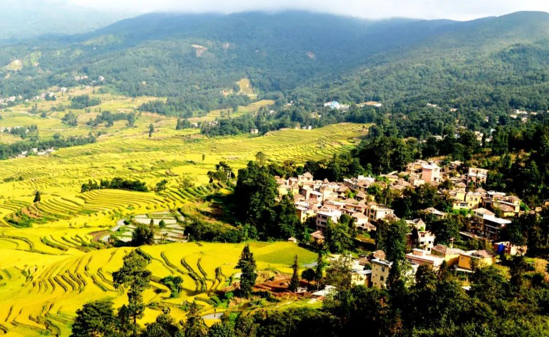 http://www.chnbk.com/changningfangchan/14250.html